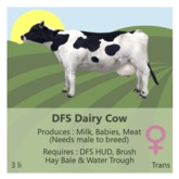 DFS Dairy Cow