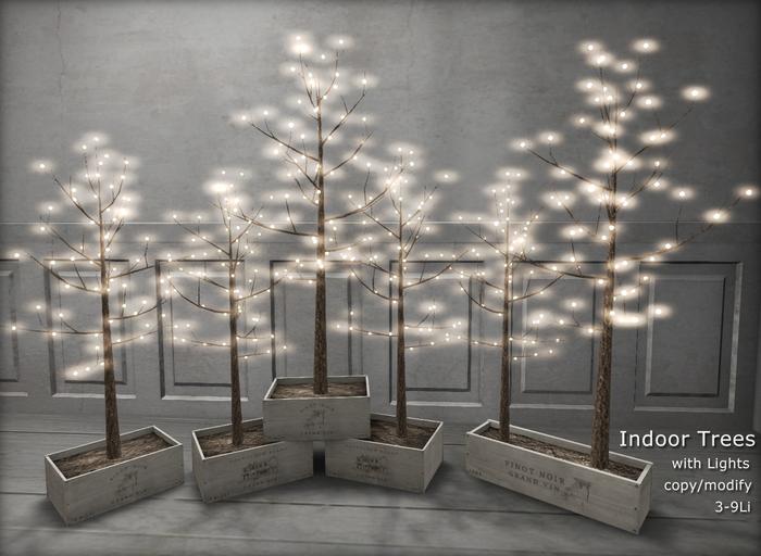 C- Indoor Trees with Lights