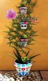 Armonia Decor [AD] Set Maceta Mexico