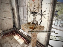 19 -DRD- MM3 - Uprooted Sink