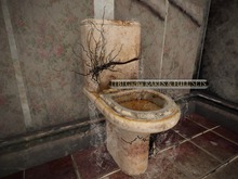 20 -DRD- MM3 - Uprooted Toilet