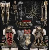 CURELESS[+] Anatomical Venus / Skeleto Avatar / GOLD