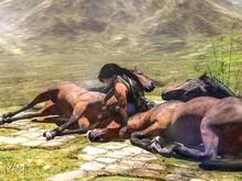 [VSM] Trust me - 3 Horse Pose