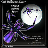 C&F Wandering / Animated Spider - Violet