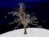Light Tree White 1