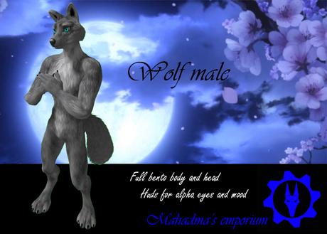 [MAH] Wolf male Bento BOX