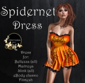 Continuum Spidernet dress