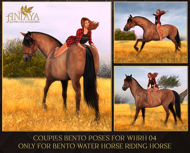:: ANTAYA :: Couples bento poses for WHRH 04 (wear)