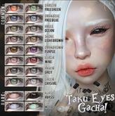 {S0NG} :: Taku // Light Grey Eye