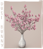 dust bunny . pom pom plant . pink . boxed