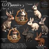*HEXtraordinary* Bunny Wanderer - Silver