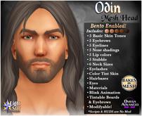 *LightStar-Mesh Head-Odin