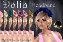 Continuum Dalia Headband