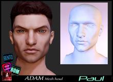 *!*Adam Mesh Head2- Paul - BOM Bento -