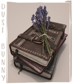dust bunny . wiccan book stack . boxed