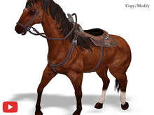 COPY/MODIFY | Animpet Animated Animesh Horse 16 Animations, Endless Stories, HuD, Four Colors