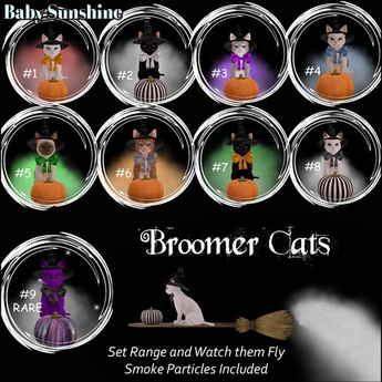 Broomer Cat #6 Ginger BOX