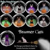 Broomer Cat #5 Siamese BOX