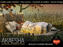 *- Akaesha's -* Autumn Cuddle Blanket Box