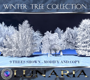 Winter Tree Collection