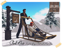 Sled Duo ♥ CHEZ MOI