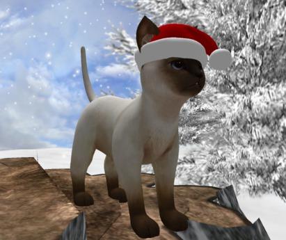 X-Mas Kitty  with Santa cap