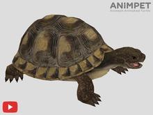 COPY/MODIFY | Animpet Animated Animesh Turtle