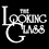 The Looking Glass - Marcus Inkpen