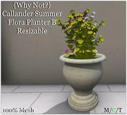 {Why Not?} Callander Summer Flora Planter B-Boxed