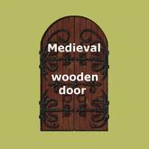 Medieval wooden door - texture