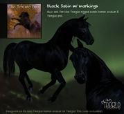 Teegle Texture Pack - Black Satin - Texture Barn