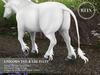 REIN - TeeglePet Unicorn Tail & Leg Fluff SHETLAND PONY