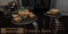 Eclectica Curiosities- Pumpkin Spice Set-orange
