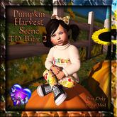 GP&D - Pumpkin Harvest Family 1 - TD Baby 2 - C/M