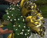Cj rose bouquet glamour gold 03