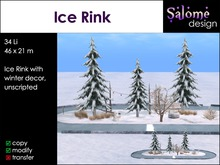 Ice Rink for Ice Skating