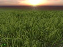Full Perm Mega Pack Quality Animated Grass Mesh