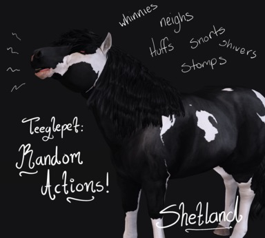 ~Mythril~ Teeglepet: Random Actions: Shetland
