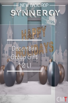Synnergy  December Group Gift