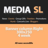 Media SL Banner column Right 300x250 4 Week