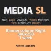 Media SL Banner column Right 300x250