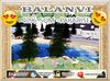 Balanvi 2