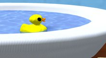 DM Rubber Ducky~Boxed