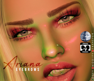 LQ X ARIANA EYEBROWS - GENUS + BOM