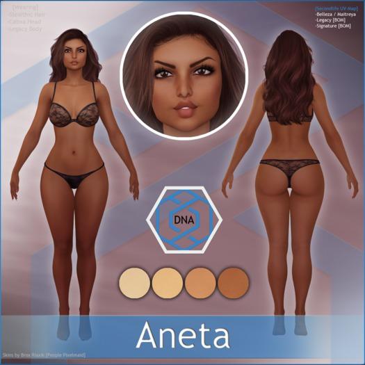 [DNA] Aneta Skin HUD