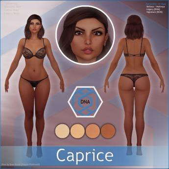 [DNA] Caprice Skin HUD