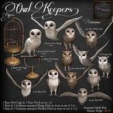 3. *HEXtraordinary* Brass Owl Cage - RARE 1