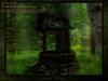 Fine Art - LOST WELL - Toy's photography painting mural home furnishing decor canvas picture