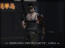 [P.0.E] - Seraph Prosthetic Arm