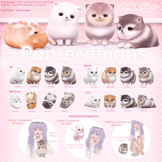 +Half-Deer+ Pomeranian Gacha [1 random - WEAR/DO NOT OPEN]